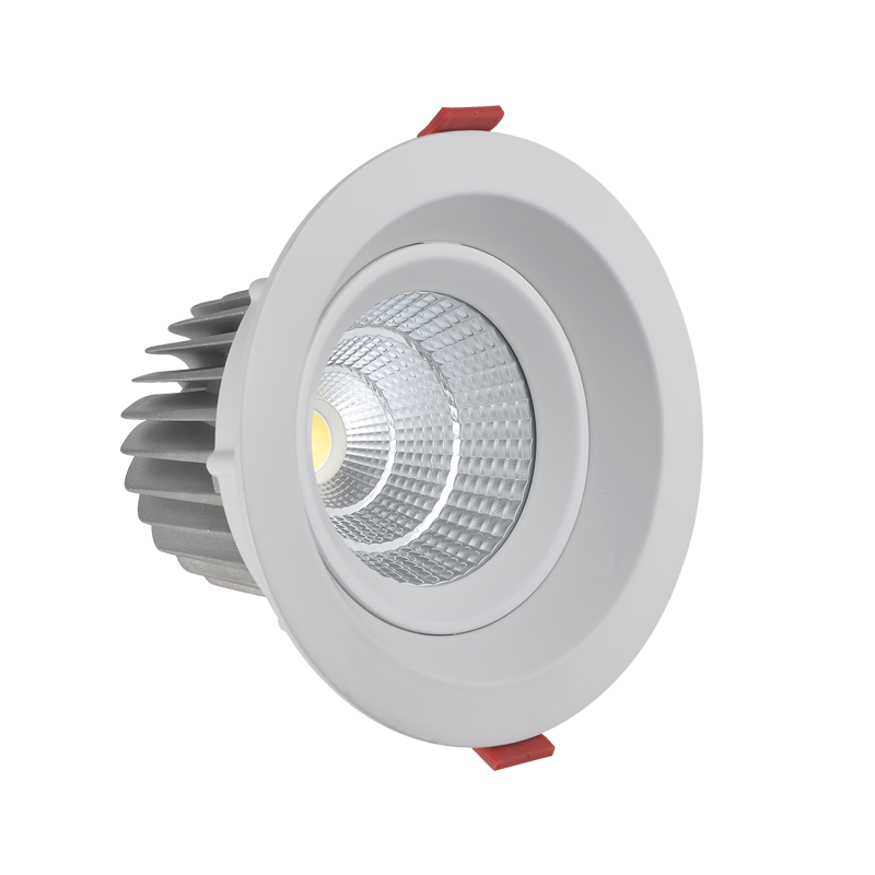 Dimmable Led Downlight