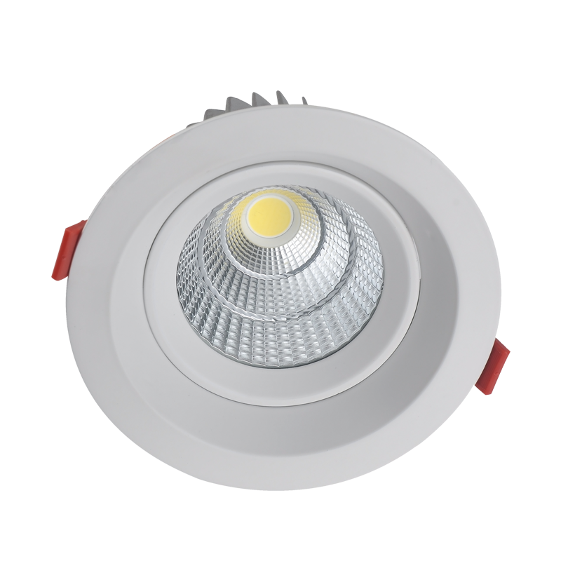 LED Downlight DTP Series 7-30W
