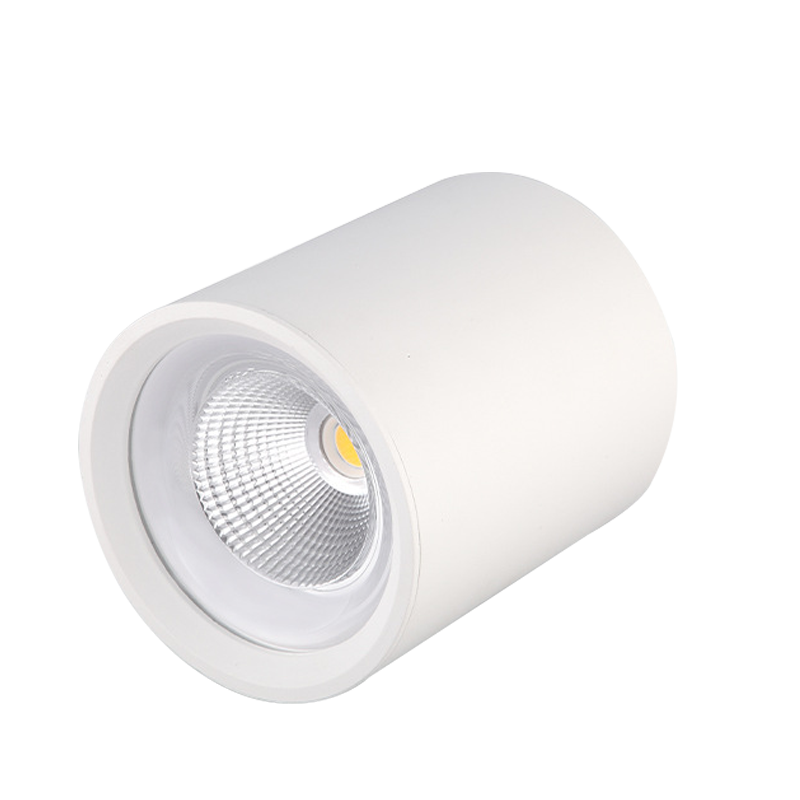 LED Surface Mounted Downlight SMC Series