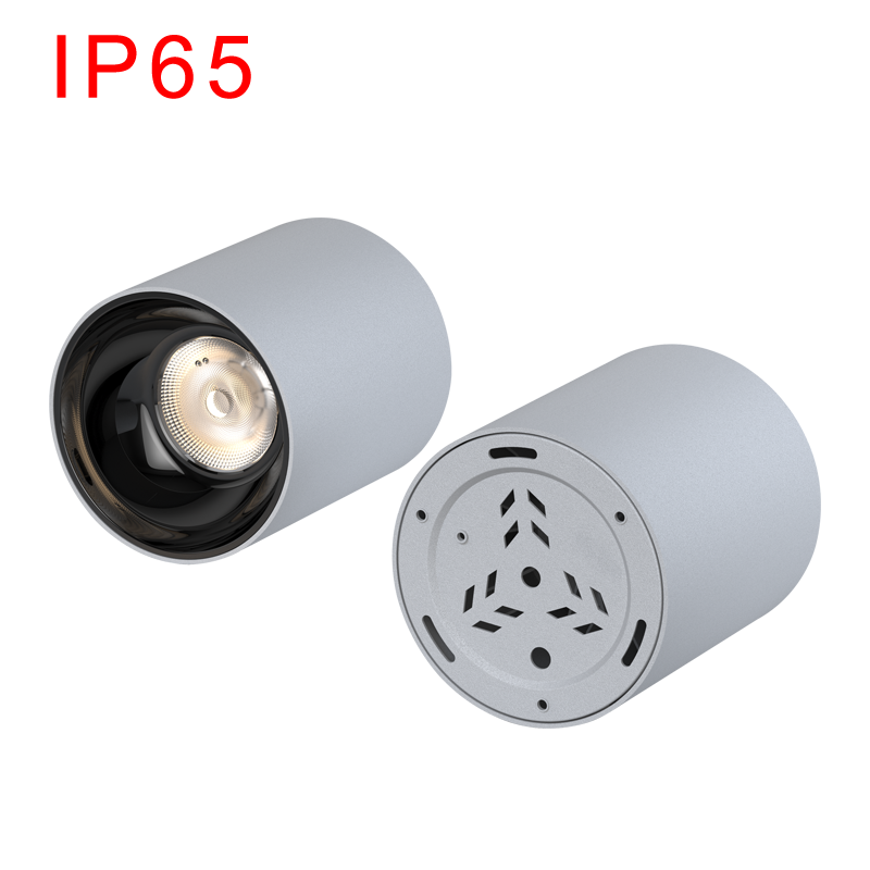 IP65 LED Surface Mounted Downlight SMD Series