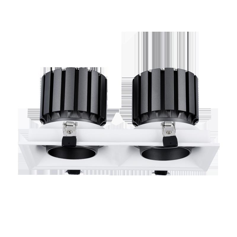 LED Hotel Downlight Double head HTW Series